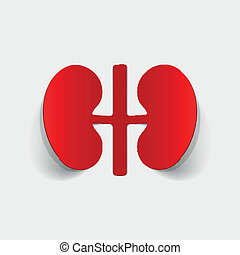realistic design element: kidneys, medical