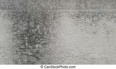Autumn rain. Roadway