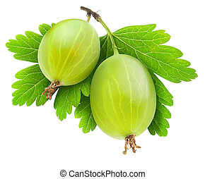 Gooseberry - Twogooseberries isolated on white