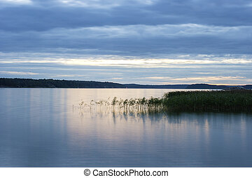 Tranquil Scene of Lake and Reeds