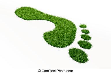 grass footprint ecology concept