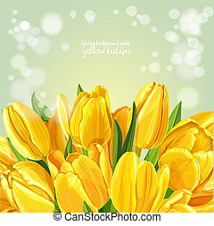Spring background with a bouquet of yellow tulips