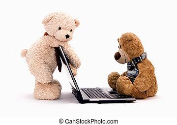 teddy bear -  Teddy Bears are surfing on the Internet