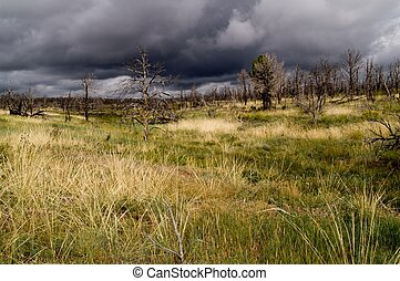 Storm clouds over Mesa Verde