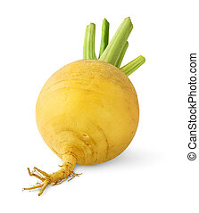 Turnip isolated over white