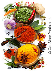 Spices and herbs over White Food and cuisine ingredients