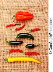 Hot pepper collection on jute background, vertical