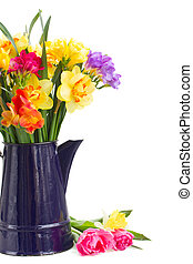 freesia and daffodil flowers in blue pot close up -...