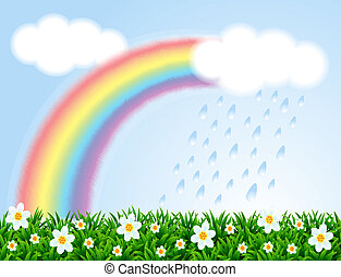 Landscape with a rainbow and camomiles.