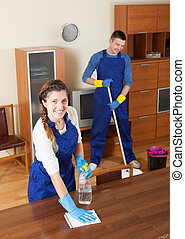 Professional cleaners - Team of professional cleaners...