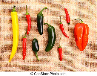 Hot pepper collection on jute background, close up