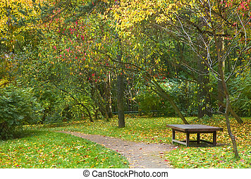 Peaceful resting place - Lonely bench in a park during fall