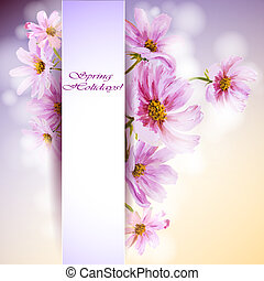 Cosmos flowers background Spring flowers invitation template...