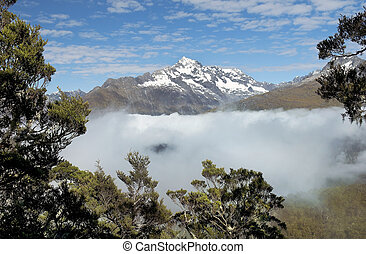 magnificent fabulous scenery in New - Routeburn track,...