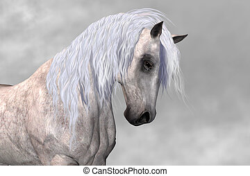 ARISTOCRAT - The wisdom and dignity of this white stallion...