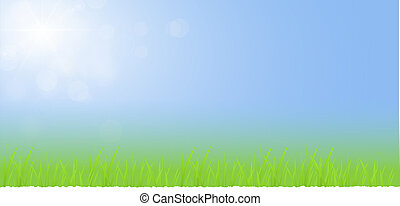 Green grass with blue sky landscape
