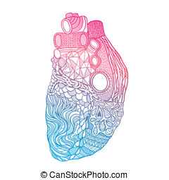 doodle heart. Love vector illustration