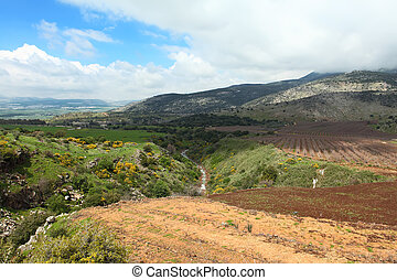 Banias - Wild Landscape With Golan Heights,Israel
