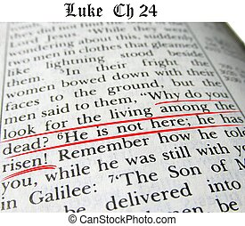 He is Risen - Luke chapter 24 verses 5 and 6 give the...