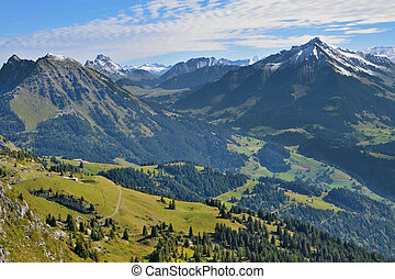 Gorgeous weather in the Swiss Alps. Green meadows and pine...