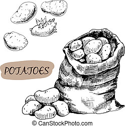 Potatos. Set of graphic hand drawn illustrations