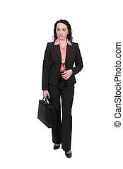 Business Woman with briefcase - Beautiful young upwardly...