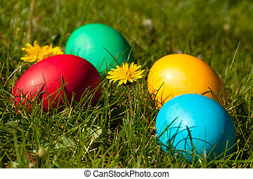 Easter Eggs - Four colorful Easter eggs in green meadow with...