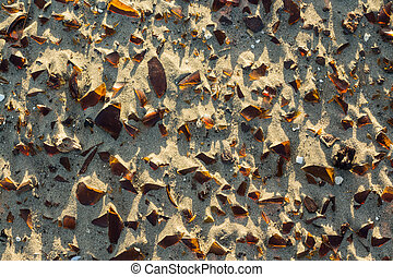 Brown Glass Fragments