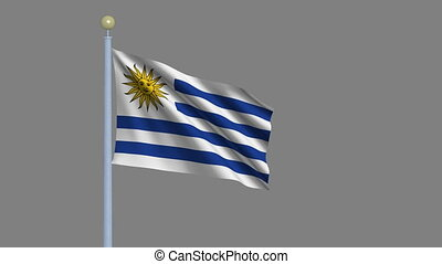 Flag of Uruguay waving in the wind with flagpole - very...