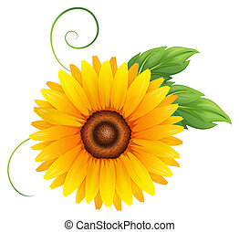 A fresh blooming yellow flower - Illustration of a fresh...