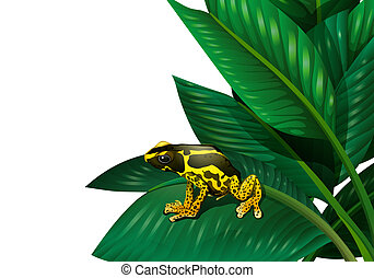A plant with a frog - Illustration of a plant with a frog on...