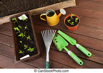 Gardening tools, plants and soil on  wooden table.