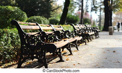 Autumn Desolated Benches - Empty melancholically benches in...