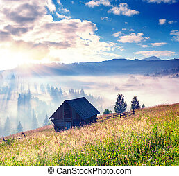 Foggy landscape in the mountains in summer