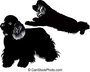 cocker spaniel dog vector isolated