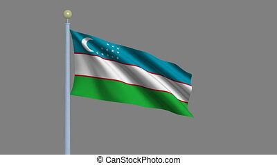 Flag of Uzbekistan waving in the wind with flagpole - very...