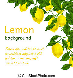 Lemon background poster - Natural organic ripe juicy lemon...