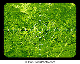 Infrared target view - Infrared night view of a target in a...
