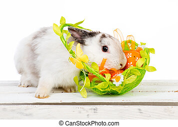 Easter bunny with basket - cute white Easter bunny with a...