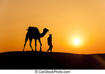 desert local walks with camel through Thar Desert - A desert...