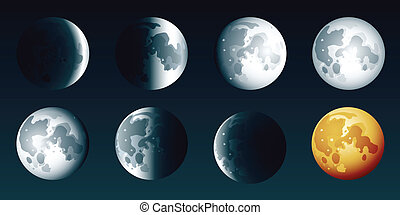Moon Phases - Illustration set of the phases of the moon.