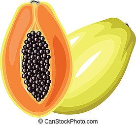 Papaya fruit - Cartoon colorful image papaya fruit