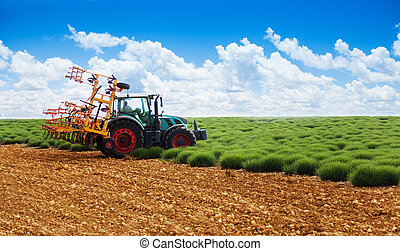 Tractor plowing lavender field in spring, Provence, France