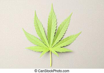 cannabis, feuille