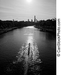 rowers on the yarra river in melbourne australia