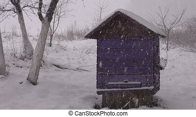 snow falling on beehive - winter snow falling on wooden...