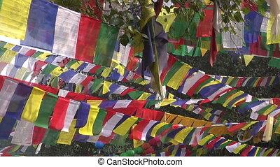 Buddhist praying flags in Lumbini - Buddhist praying flags...