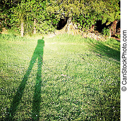 Shadow cast by photographer on grass