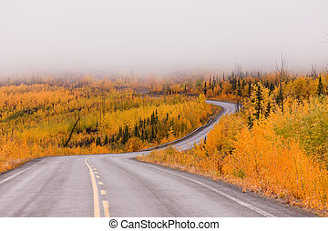 Winding golden fall taiga road Yukon Canada - North Klondike...