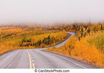 Bobina, dorado, otoño, Taiga, camino, Yukon,...